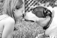 Dog licking girl Royalty Free Stock Images