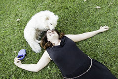 Dog licking woman Stock Photo