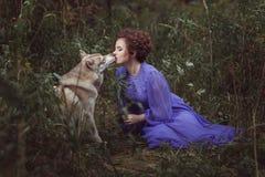 Dog licks the girl's face. Stock Photo