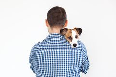 The dog lies on the shoulder of its owner. Jack Russell Terrier in his owner`s hands on white background. The concept of people an royalty free stock image
