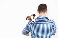 The dog lies on the shoulder of its owner. Jack Russell Terrier in his owner`s hands on white background. The concept of people an royalty free stock photo