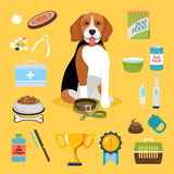 Dog life icons Royalty Free Stock Photo