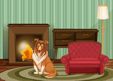 Dog and living room Royalty Free Stock Image