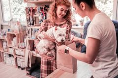 Dog looking into bag while shopping in pet shop with owner. Looking into bag. Funny white dog looking into bag while shopping in pet shop with owner royalty free stock photos