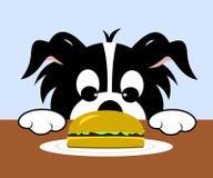 Dog Looking At Hamburger. Cartoon dog with paws on table looking at hamburger on plate Royalty Free Illustration