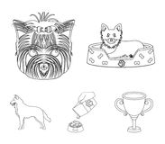 A dog in a lounger , a muzzle of a pet, a bowl with a feed, a sheepdog with a ball in his teeth. Pet ,dog care set. A dog in a lounger , a muzzle of a pet, a Royalty Free Stock Images