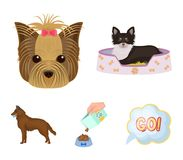 A dog in a lounger , a muzzle of a pet, a bowl with a feed, a sheepdog with a ball in his teeth. Pet ,dog care set. A dog in a lounger , a muzzle of a pet, a Stock Photography