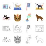 A dog in a lounger , a muzzle of a pet, a bowl with a feed, a sheepdog with a ball in his teeth. Pet ,dog care set. Collection icons in cartoon,outline style Royalty Free Stock Photo