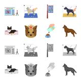 A dog in a lounger , a muzzle of a pet, a bowl with a feed, a sheepdog with a ball in his teeth. Pet ,dog care set. Collection icons in cartoon,monochrome style Royalty Free Stock Image
