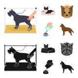 A dog in a lounger , a muzzle of a pet, a bowl with a feed, a sheepdog with a ball in his teeth. Pet ,dog care set. A dog in a lounger , a muzzle of a pet, a Royalty Free Stock Photo