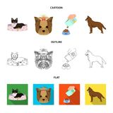 A dog in a lounger , a muzzle of a pet, a bowl with a feed, a sheepdog with a ball in his teeth. Pet ,dog care set. A dog in a lounger , a muzzle of a pet, a Royalty Free Stock Photos