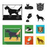 A dog in a lounger , a muzzle of a pet, a bowl with a feed, a sheepdog with a ball in his teeth. Pet ,dog care set. A dog in a lounger , a muzzle of a pet, a Stock Photos