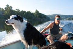 Dog loves fishing boat Stock Image