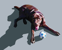 Dog low poly design Royalty Free Stock Images