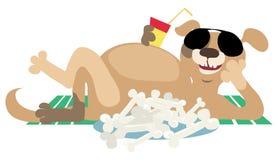Dog after lunch. Dog enjoys life after good lunch vector illustration