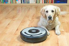 Dog is lying next to the vacuum cleaner Royalty Free Stock Photo