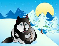 Dog lying in snowy landscape Royalty Free Stock Photo