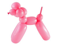 Dog made with a balloon isolated on white. Pink dog made with a balloon isolated on white royalty free stock image