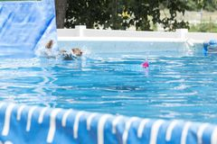 Dog jumping in to a pool. Dog makes a big splash at pool challenge stock images