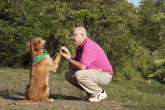 Dog and man friends Stock Image