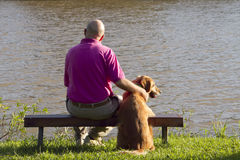 Dog and man friends royalty free stock photography