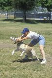 Dog and man practicing at Canine Frisbee Contest Royalty Free Stock Image