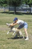 Dog and man practicing at Canine Frisbee Contest, Westwood, Los Angeles, CA Royalty Free Stock Image