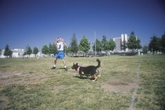 Dog and man practicing at Canine Frisbee Contest, Westwood, Los Angeles, CA Royalty Free Stock Photo