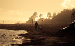 Dog and a man walking along the beach in the rain. Sunset stock image