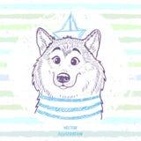 Dog marine style Stock Images