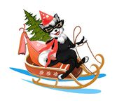 The dog in the mask is racing on a sledge with Christmas tree an. Happy dog rides in a sleigh with Christmas tree and gifts Royalty Free Stock Photo
