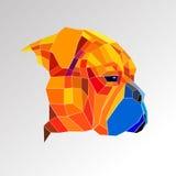 Dog mastiff illustration portrait puppy bullmastiff graphic eyes Royalty Free Stock Photos