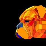 Dog mastiff illustration portrait puppy bullmastiff graphic eyes Royalty Free Stock Image