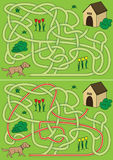 Dog maze Stock Images