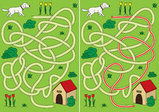Dog maze. For kids with a solution Royalty Free Stock Images