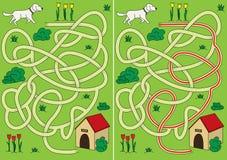 Dog maze Royalty Free Stock Images