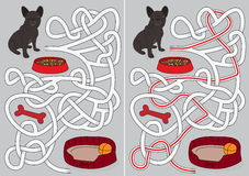 Dog maze. For kids with a solution Stock Image