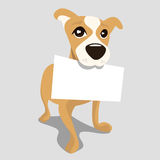 Dog with message paper Stock Images
