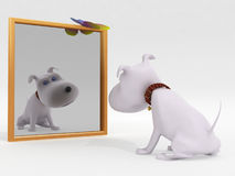 Dog and mirror. On a white background Stock Images