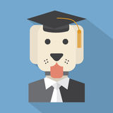 Dog With Mortarboard Pedigree Concept Stock Photos