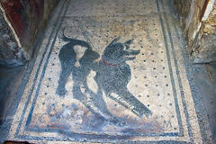 Dog mosaic in Pompeii Royalty Free Stock Photo