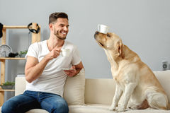 Dog with a mug on its nose sitting. Pet holding cup with its nose while happy man drinking on couch Royalty Free Stock Images