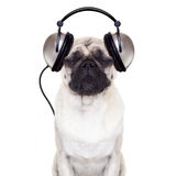 Dog music Royalty Free Stock Photos