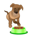 Dog near bowl with food Royalty Free Stock Photos
