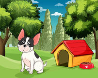 A dog near a doghouse with a dog food Royalty Free Stock Photo