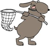 Dog Net. This illustration depicts a dog using a large butterfly net royalty free illustration