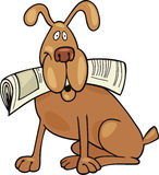 Dog with newspaper Royalty Free Stock Image