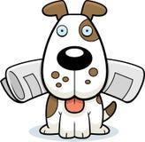 Dog Newspaper Stock Photography