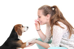 Dog obedience training. M trainer with pet Royalty Free Stock Photo