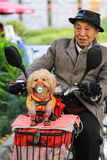 The dog and the old man in chengdu,china Royalty Free Stock Photography